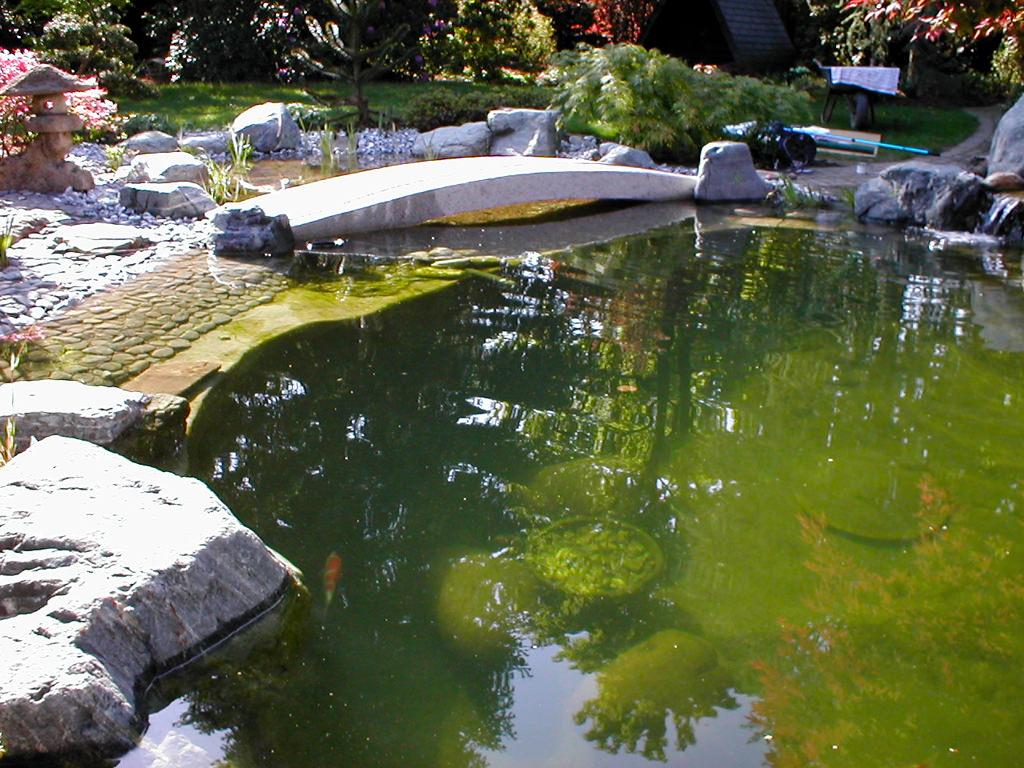 Referenzen - Koiteiche von Tara Teich und Garten