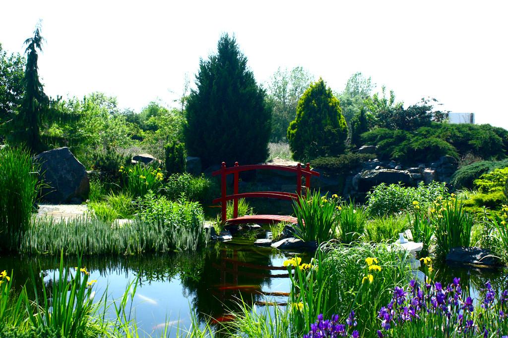 Biotopteich-Musterpark-in-Naunhof-Firma-Tara
